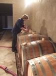 Getting the Juice into Tonneau to begin Fermentation