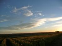 paysage_automne