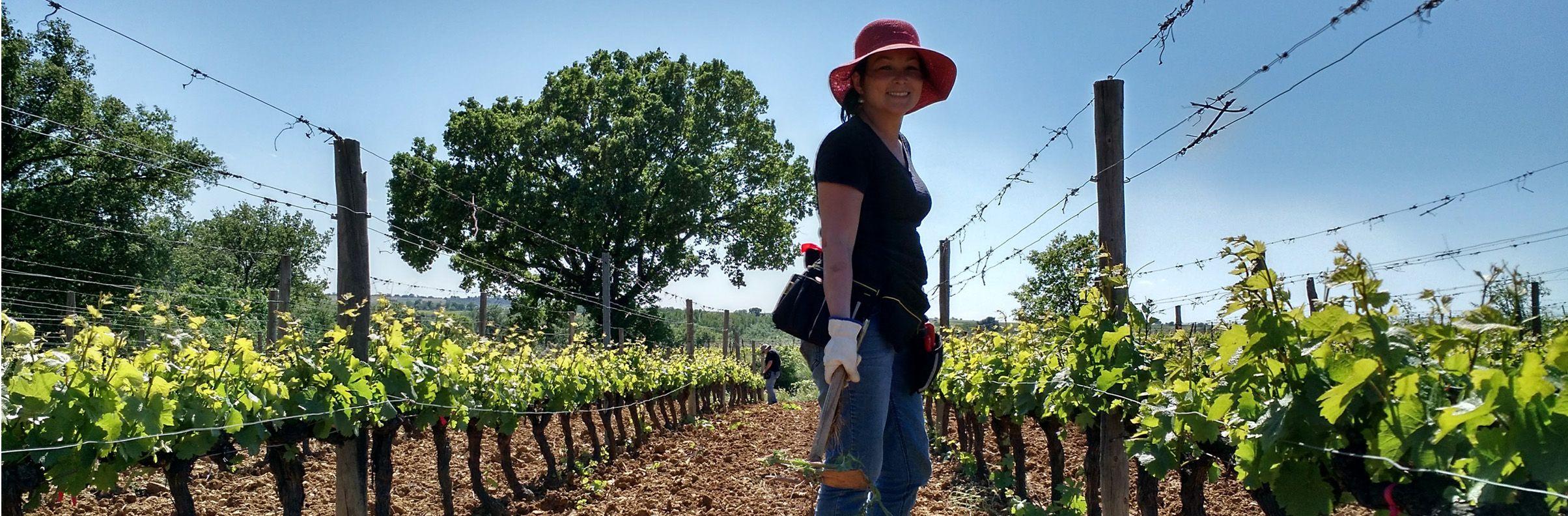 Bassac vineyard worker