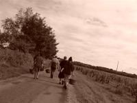 vendangeurs la Grange Tiphaine-1